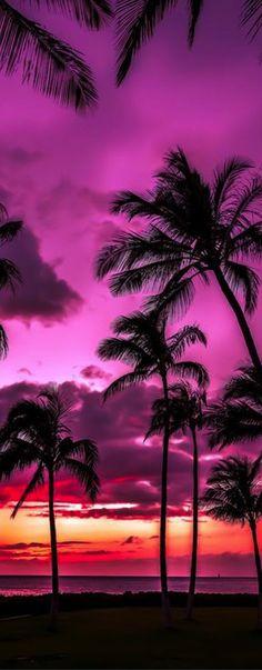 Sunset at Florida, USA