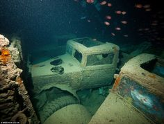 Treasure trove of classic cars at the bottom of the sea: The British Merchant Navy ship carrying military vehicles that was sunk in the Red Sea during the Second World War Abandoned Cars, Abandoned Buildings, Abandoned Places, Derelict Places, Abandoned Ships, Abandoned Vehicles, Underwater Ruins, Underwater World, Underwater Shipwreck