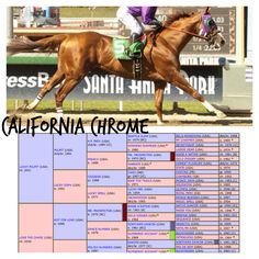 California Chrome. No humble pedigree here, Seattle Slew & Secretariat on the top side.