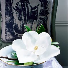 A large flower, like a magnolia, doesn't need any other adornments. It looks stunning all on its own, floating in a low Limoges bowl