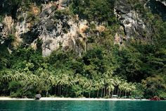 Arriving on this remote beach  as if it was waiting for us to visit ! No one and some coconut trees  #nature #landscape #elnido #palawan #philippines #boattrip #view #island #islandlife #lagoon #teal #turquoise #beautiful #jungle #green #Photography #blue #whitesand #ocean #amazing #travel #trip #adventure #coconuttrees #palmtrees
