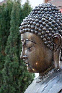 boedha Buddha Peace, Buddha Life, Buddha Quote, Gautama Buddha, Buddha Buddhism, Buddhist Practices, Buddhist Philosophy, Yoga, Buddhism