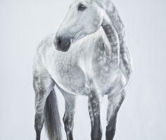 www.pegasebuzz.com | Equestrian photography : Jill Greenberg.