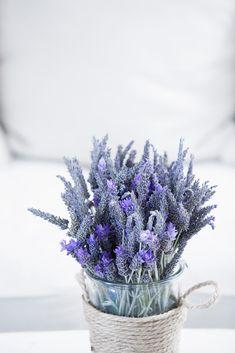 GREECE CHANNEL |  Basket of Wild Purple Flowers