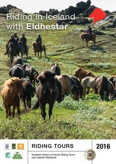 Eldhestar specializes in horseback riding tours in Iceland and offers a variety of riding tours for the inexperienced as well as the experienced rider.