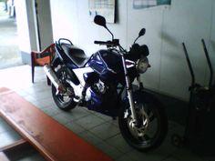 Minha motoca depois do banho, agora com o spoiler, no CTO do posto onde trabalho! Yamaha 250, Motorcycle, Vehicles, Bath, Motorbikes, Motorcycles, Car, Choppers, Vehicle