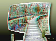 A 3D Stereo Anaglyph of an elevated wooden walkway trail through Abbott's Mill Nature Center near Milford Delaware created in the OOF (Out Of Frame) technique. This style may also be known as OOB (Out Of Bounds).