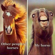 Always a mare:)