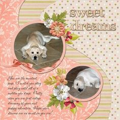 Ideas for Scrapbookers: A new Swirl Template for your photos!