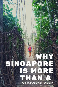 WHY SINGAPORE IS MORE THAN A STOPOVER CITY.