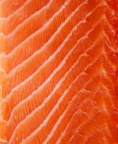 Why Americans Stopped Eating Their Own Seafood Food Patterns, Patterns In Nature, Textures Patterns, Photography Themes, Macro Photography, Kobe Japanese Steakhouse, Close Up Art, Meat Restaurant, Food Texture