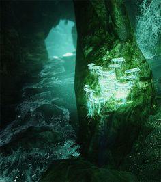Maiden Of Asgaard Skyrim Wallpaper, Skyrim Game, Scrolls Game, Elder Scrolls V Skyrim, Xenoblade Chronicles, Bioshock, Computer Wallpaper, Dragon Age, Slytherin