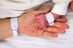 Close-up with hands of newborn and his mother placed together stock photo