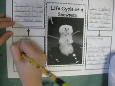 Life cycle of a snowman, too cute it teaches the states of water: Condensation (clouds), precipitation (snow), melting (water), and evaporation (water vapor). Could be used for states of matter...solid, liquid, gas.