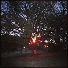 #artvilla #garikula 3installation #pepilot #aliceinwonderland #whoyouare?