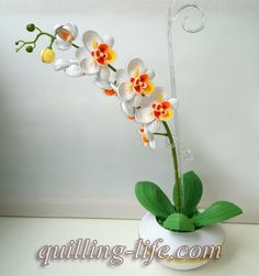 http://quilling-life.com/belaya-orxideya/