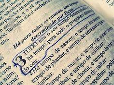 """550 curtidas, 13 comentários - Citando Deus ✝ (@citandodeus) no Instagram: """"----------------------------------------------------------------------------------------------…"""""""