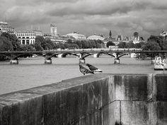 ...de coloms a París