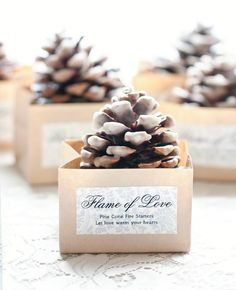 Pine Cone Fire Starter Wedding Favors  --This is actually pretty neat, especially if you were going to incorporate pine and what not in your decor.