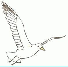 How to draw a seagull in flight, step-by-step. (Add to picture with sailboats.) (art, kids, dr awing lessons)