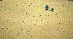 Kentucky hay field  #America #myt