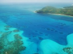 Over 90% of Caribbean corals are dead, reveals study  Fishing, pollution and global warming must destroy all the planet's coral reefs by 2050
