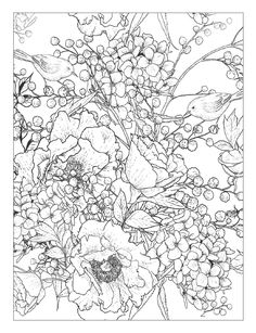 Cool Flower Coloring Pages Beautiful Beautiful Flowers Detailed Floral Designs Coloring Book Detailed Coloring Pages, Cool Coloring Pages, Flower Coloring Pages, Coloring Pages To Print, Printable Coloring Pages, Adult Coloring Pages, Coloring Books, Coloring Sheets, Colorful Drawings