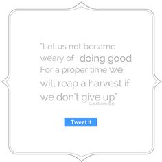 Let us not become weary in doing good, for at the proper time we will reap a harvest if we do not give up Galatians 6:9 via PartnerSss @TanyaYT1