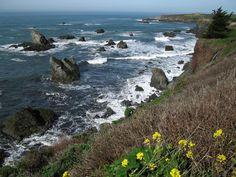 Gleason Beach, Sonoma Coast State Park/Sonoma Coast State Beach ...
