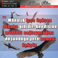 #münafık #cehennem - #regrann Sayings, Movies, Movie Posters, Lyrics, Films, Film Poster, Cinema, Movie, Film