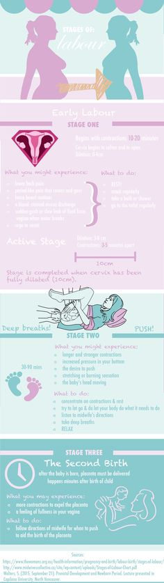 Stages of Labour Infographic