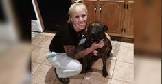 Glen Allen woman mauled to death by her dogs while out for a walk   WTVR.com