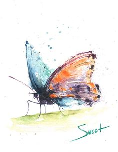 Orange butterfly art print  Blue butterfly wall art by SignedSweet