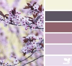 Color Spring via @designseeds