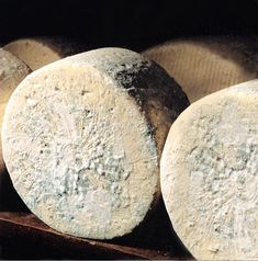 ~✿ڿڰۣ  Bleu d'Auvergne is a French blue cheese, named for its place of origin in the Auvergne region of south-central France. It is made from cow's milk, and is one of the cheeses granted the Appellation d'Origine Contrôlée from the French government. Bleu d'Auvergne has a strong and pungent taste, but to a lesser extent than other blue cheeses; it is less salted, with a creamier and more buttery taste and a moister texture.