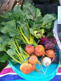 The Bainbridge Island Farmers Market (5 Minute walk from Grow) is the place to go on the Island for fresh, local produce.