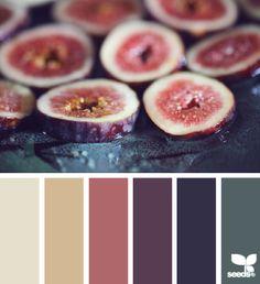 Fresh color   design seeds   Bloglovin'