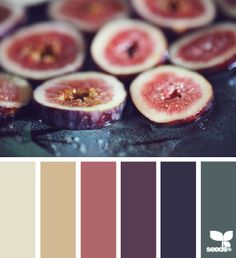 Fresh color | design seeds | Bloglovin'