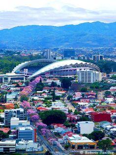Boulevard Rohrmoser, San José, Costa Rica - http://ticotimes.com/costa-rica/san-jose-things-to-do