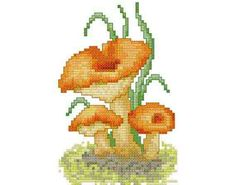 "Mushrooms (Chanterelle) -  PDF Cross Stitch Pattern,  Fabric:	18ct  or  14ct Aida, Grid Size:	48W x 72H, Design Area:	2.56"" x 3.94""  (18ct)  or  3.29"" x 5.07""  (14ct)"