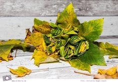 autumn diy idea with foliage  #fall #falldiy #diy #diyproject   #diycrafts #autumn #foliage #basteln #bastelideen #herbst #herbstzeit #blumen #blumenstrauß