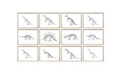 Dinosaur basis Art Print SET van 12. INGELIJSTE. door curiousgallery