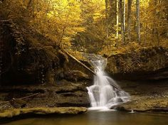 41 Free Fall Wallpapers and Backgrounds: Golden Waterfall by eWallpapers