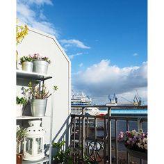 Hello again  #aida #balcony #balkon #blooms #Blumen #flowers #flowerstagram #Frühling #frühlinginhamburg #hafen #hafenliebe #Hamburg #hh #home #homeinspo #myview #pflanzen #plants #spring #wearehh #welovehh