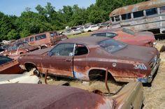 Mopar Graveyard Hidden in the Carolina Hills