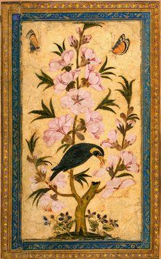 Bird Perching on a Blossoming Branch Miniatures, Gouache, 20x11 cm Origin: Iran Second half of the 17th century