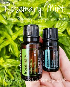 Rosemary Mint Diffuser Blend by peaceloveguacamole.com 5 drops Rosemary Essential Oil 3 drops Spearmint Essential Oil Great in a 100mL water diffuser!