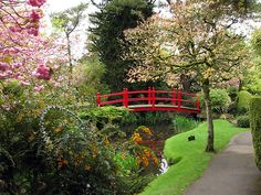 The beautiful Japanese Gardens at Tully, Co.Kildare. On the same grounds as the Irish National Stud.