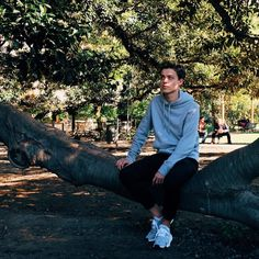 Sat on a very old tree in central Buenos Aires @throughblakesview