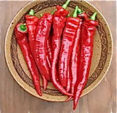Eko Chili Sweet Nardello, Extremt mild chili alt. stark paprika. Den godaste paprikan/chilin att steka, bra att torka till ett sött paprikapulver, god att frysa in i bitar. Tidig, pålitlig, ger mycket och skördas både som omogen grön och som mogen mörkröd, 15-20 cm lång frukt. Stor (50-70 cm hög). 25kr
